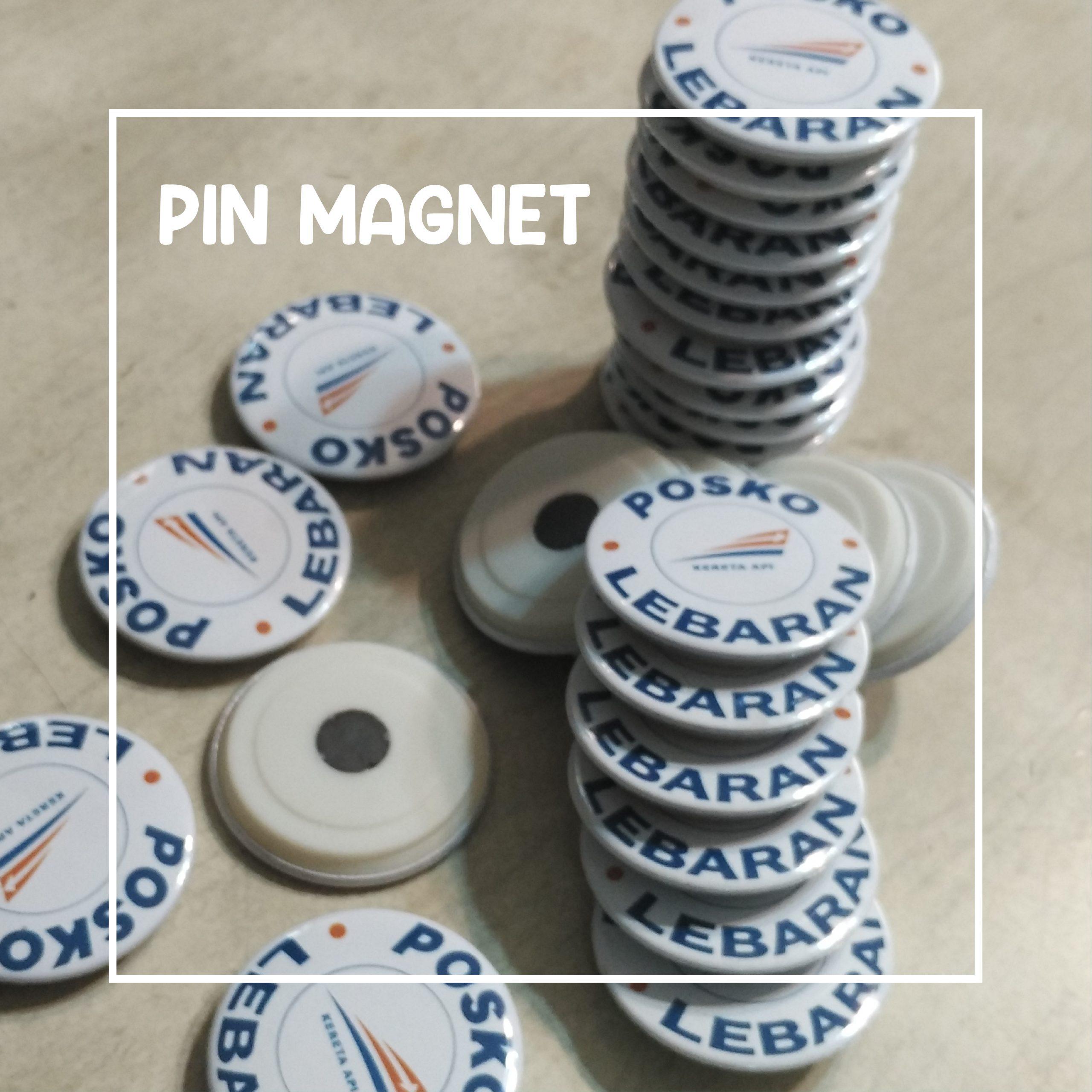 Pin Magnet 44